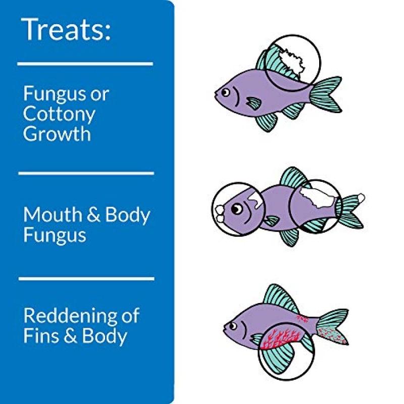 Api Pimafix Antifungal Freshwater And Saltwater Fish