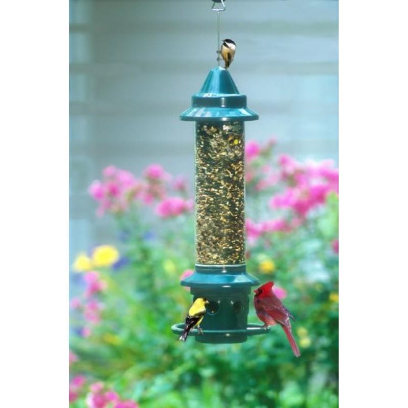 Brome 1024 Squirrel Buster Plus Wild Bird Feeder with Cardinal Perch