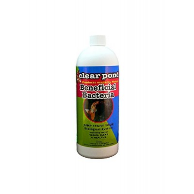 Clear Pond Beneficial Bacteria Liquid, 32-Ounce