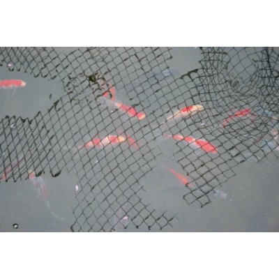 20 Feet x 30 Feet Pond Netting with Placement Stakes, Black