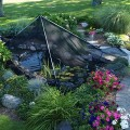 The Pond Guy PondShelter Cover Net 11' x 16'