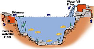 Skimmers for Koi pond plumbing diagram